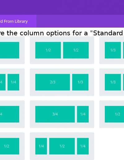 Standard Section Column Options in Divi